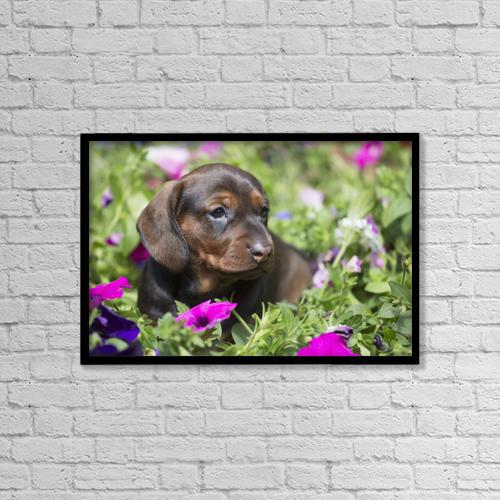 "Printscapes Wall Art: 18"" x 12"" Canvas Print With Black Frame - Animals by Lynn Stone"