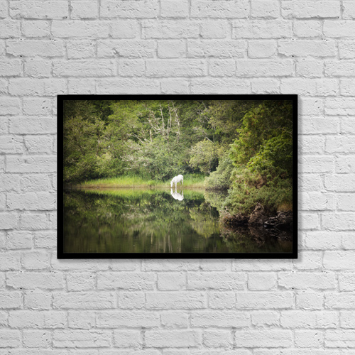 "Printscapes Wall Art: 18"" x 12"" Canvas Print With Black Frame - Animals by Peter McCabe"