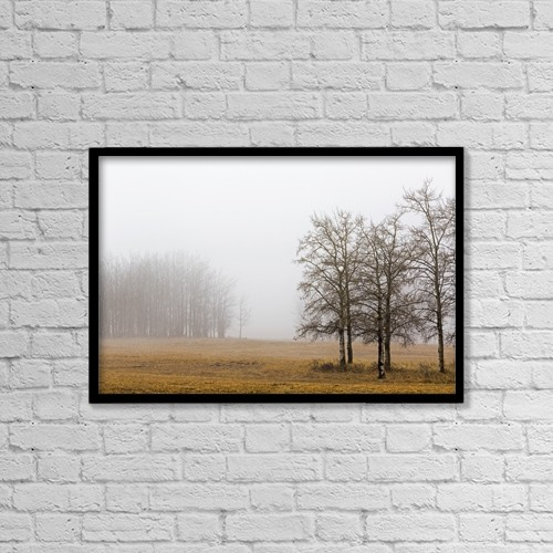 """Printscapes Wall Art: 18"""" x 12"""" Canvas Print With Black Frame - Trees In A Foggy Field by Michael Interisano"""
