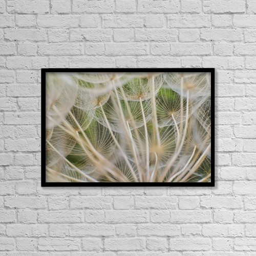 "Printscapes Wall Art: 18"" x 12"" Canvas Print With Black Frame - Flowers by Brian Guzzetti"