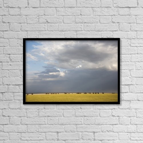 "Printscapes Wall Art: 18"" x 12"" Canvas Print With Black Frame - Animals by Kenneth Whitten"