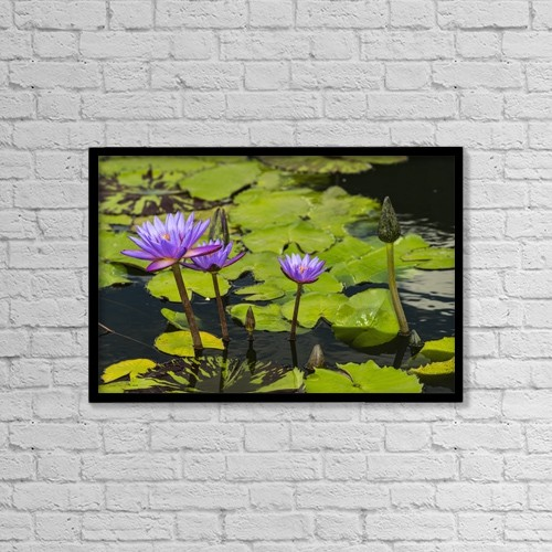 "Printscapes Wall Art: 18"" x 12"" Canvas Print With Black Frame - Flowers by F. M. Kearney"