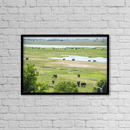 """Printscapes Wall Art: 18"""" x 12"""" Canvas Print With Black Frame - Animals by Remsberg Inc"""