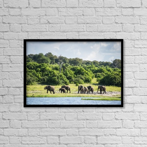 "Printscapes Wall Art: 18"" x 12"" Canvas Print With Black Frame - Animals by Remsberg Inc"