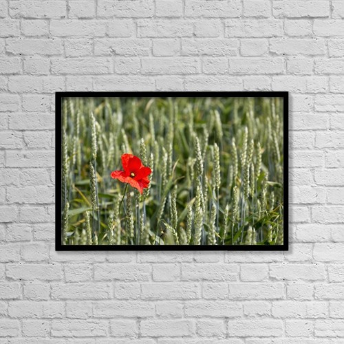 """Printscapes Wall Art: 18"""" x 12"""" Canvas Print With Black Frame - Flowers by Michael Interisano"""