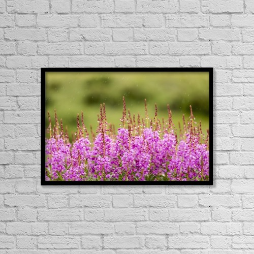 "Printscapes Wall Art: 18"" x 12"" Canvas Print With Black Frame - Flowers by Ray Bulson"