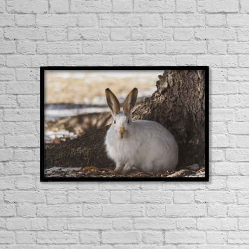 "Printscapes Wall Art: 18"" x 12"" Canvas Print With Black Frame - Animals by Jean A. H. Jackson"