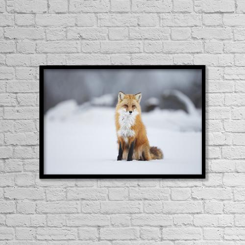 "Printscapes Wall Art: 18"" x 12"" Canvas Print With Black Frame - Animals by Vladislav Kamenski"