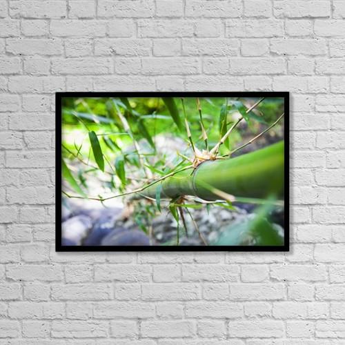 "Printscapes Wall Art: 18"" x 12"" Canvas Print With Black Frame - Bamboo Stalk; Granada by Blake Kent"