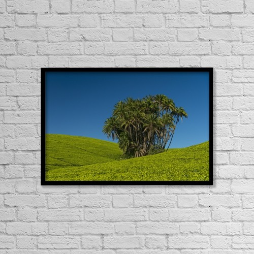 "Printscapes Wall Art: 18"" x 12"" Canvas Print With Black Frame - Agriculture by Ian Cumming"