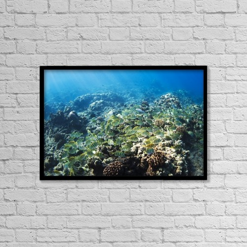 """Printscapes Wall Art: 18"""" x 12"""" Canvas Print With Black Frame - Tropical Reef In Hawaii- by Design Pics Vibe"""