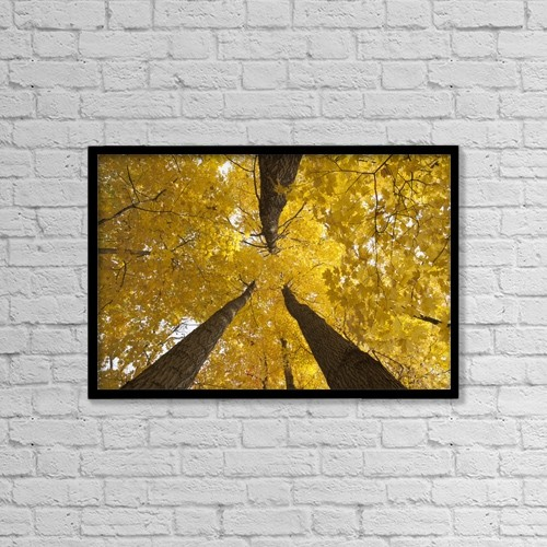 "Printscapes Wall Art: 18"" x 12"" Canvas Print With Black Frame - Nature by Ron Bouwhuis"