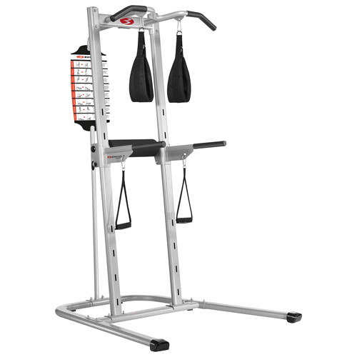 Gymnastics Equipment In Canada: Bowflex BodyTower : Home Gym Equipment