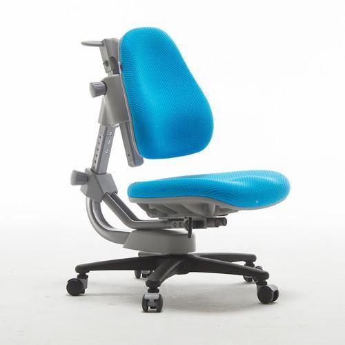 Buy ergonomic chair