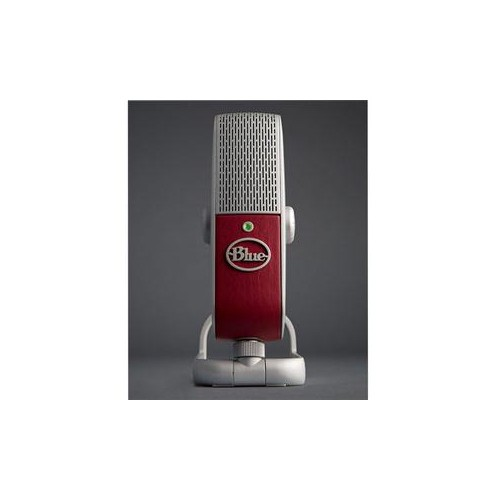 Raspberry USB Microphone
