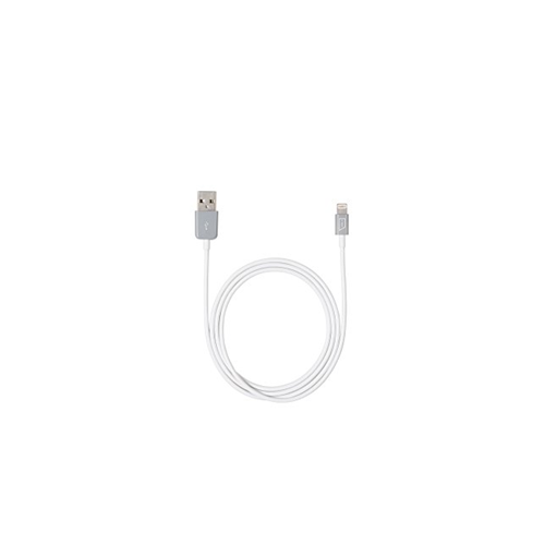 Targus 1m (3.2 ft.) USB/Apple Lightning Connector Cable (ACC96105CAI)