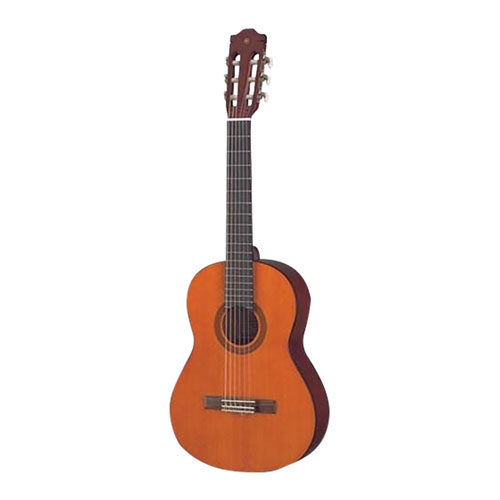 Acoustic Guitars: Dreadnought & Hollow Body | Best Buy Canada