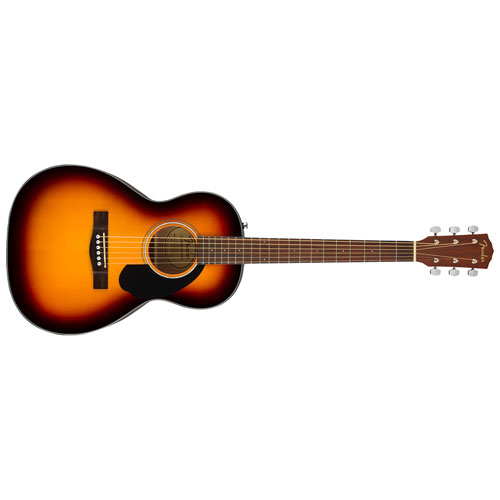 Acoustic Guitars: Dreadnought & Hollow Body   Best Buy Canada