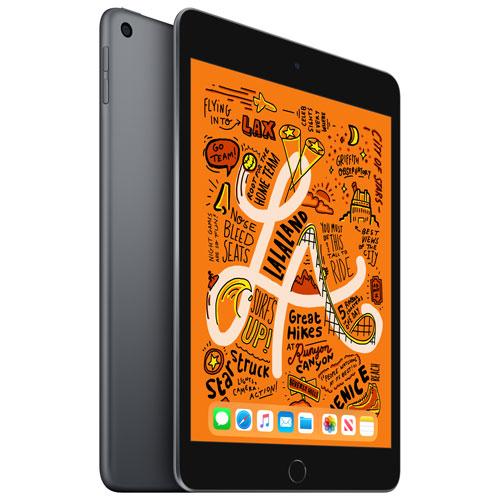 iPad mini 7,9 po 64 Go avec Wi-Fi d'Apple - Gris cosmique