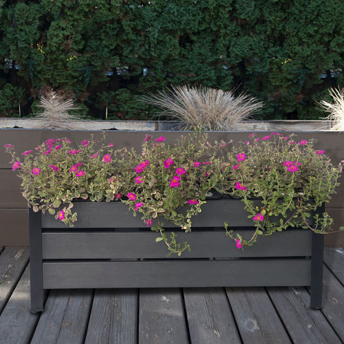 Jardinière rectangulaire en Polywood à 3 sections de Grapevine - Gris
