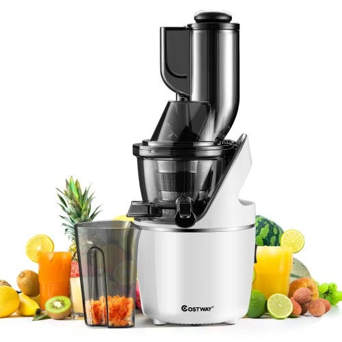 Costway Juicer Machines Slow Masticating Juicer Cold Press Extractor w/ 3'' Chute