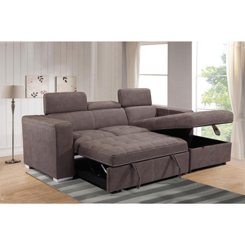Tonya Traditional 2 Piece Sectional Sofa With Pull Out Sleeper And