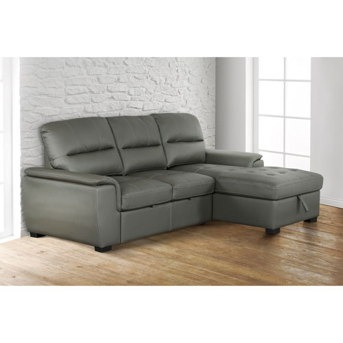 Outstanding Alana Contemporary 2 Piece Sectional Sofa With Pull Out Sleeper Right Facing Chaise Charcoal Evergreenethics Interior Chair Design Evergreenethicsorg