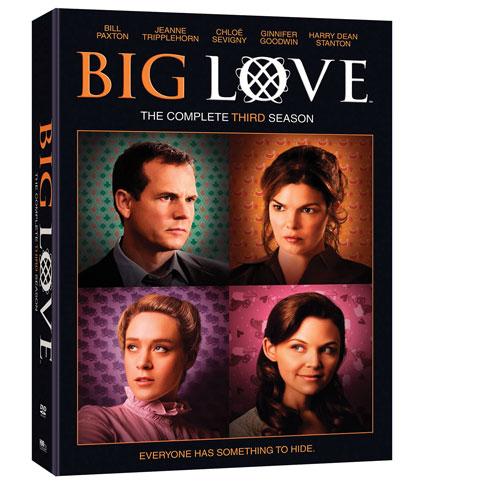 Big Love: L'intégrale de la troisième saison (2010)