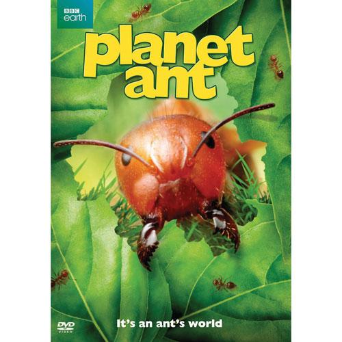 Planet Ant (2014)