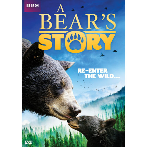 A Bear Story: Spirit's Adventure