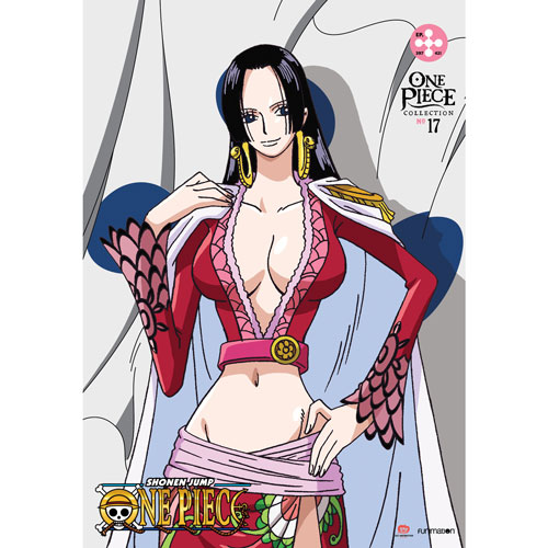 One Piece Collection 17