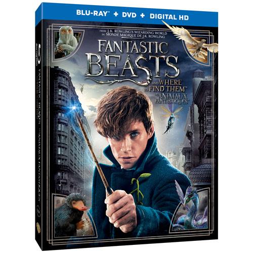 Fantastic Beasts (Bilingue) (Blu-ray)