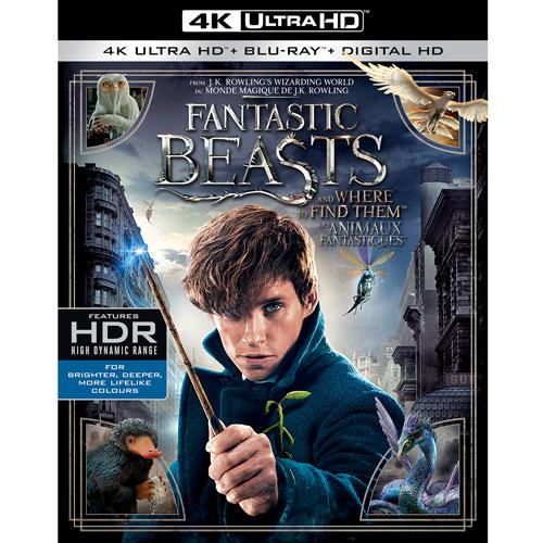 Fantastic Beasts (Bilingual) (4K Ultra HD) (Blu-ray Combo) (2016)