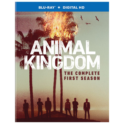 Animal Kingdom: The Complete First Season (English) (Blu-ray)