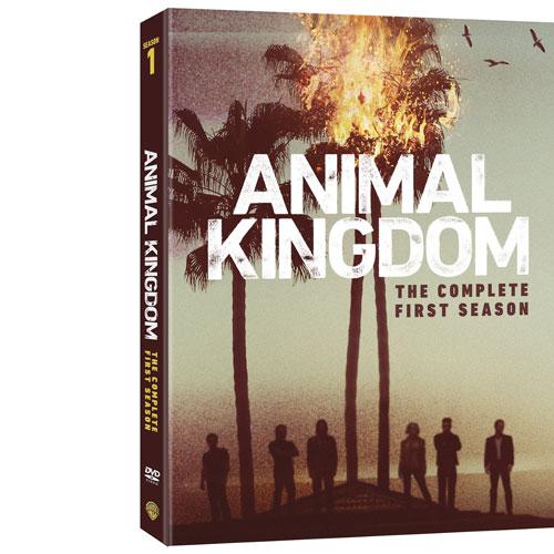 Animal Kingdom: The Complete First Season (English)