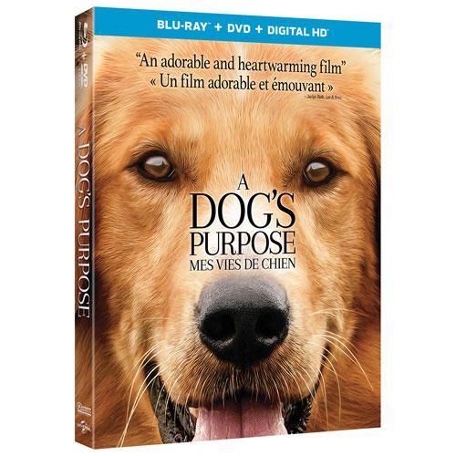 A Dog's Purpose (bilingue) (combo blu-ray)